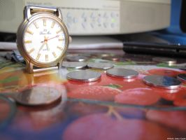 Time is money by Goppo713