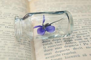 .:Message in a tiny bottle:. by bogdanici