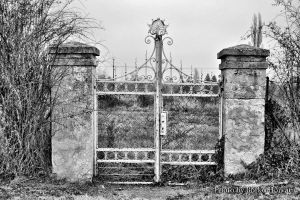 old gate by BorkoH