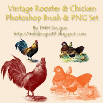 Vintage Poultry Set by frenzymcgee