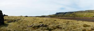 The Moss Plains by BiodiVersitY