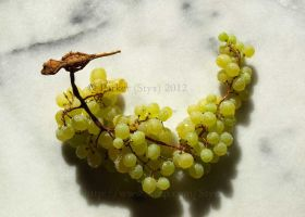 Geckos and Grapes by styx-leagon