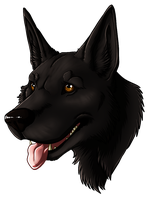 Commission - GSD by UKthewhitewolf