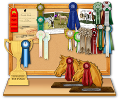 Awards Board by EquineRibbon