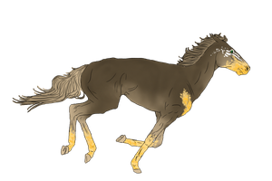 Tanned Galloper for EndingStories by LiaLithiumTM
