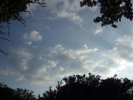 The Sky by HerrEsel