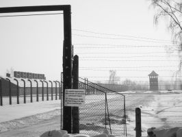 birkenau2 by smallone1989
