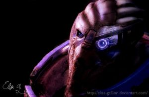 Garrus Vakarian - I'd follow you to hell by Elisa-Gallion