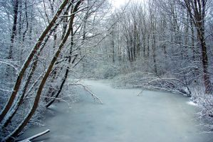 View on the frozen river 2 by steppelandstock