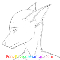 Another Try At Furries: Female Head by PonyRave