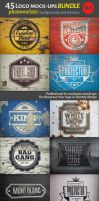 45 Vintage Logo Mock-Ups. Bundle v.1 by artgusart