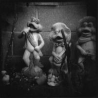 Frogs by ClaireMaree