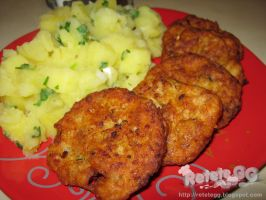 Fish and chicken meatballs by DanutzaP