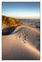 Fading Footprints - HDR by futureplug