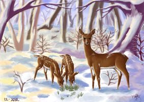 Merry Christmas Deer and Fawn by horntail7