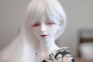 Shiro at KBJD Show by Amoraseth
