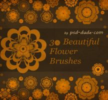 Photoshop Floral Brushes by PsdDude