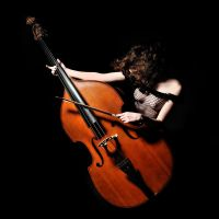 Double bass by Darvinetta
