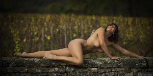 Wild grapewines by fb101