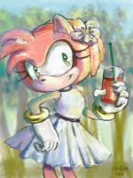 Amy Rose 456321 by MAD-Ina