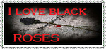 I Love Blackroses by blackroselover