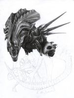Alien Queen WIP 3 by D17rulez