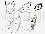 Baskabar Wolf Sketches by Nightrizer