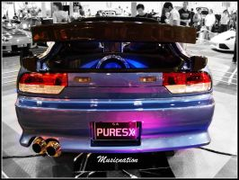 PURESX Rear by musicnation