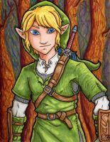 Link Sketch Color--Complete! by Mad-Willy