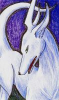 FoxDragon ACEO by global-wolf
