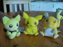 Pokemon Canvas plush by Beckie6