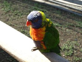 Good day by remix10tails