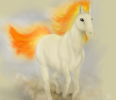 Ponyta by fabman132