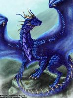 Saphira 2011 by TheDragonofDoom