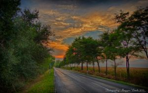 The 55 number of roads in Hungary. HDR. by magyarilaszlo