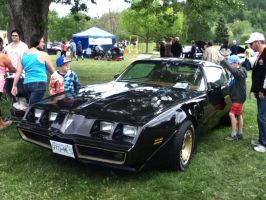The Bandit's Firebird by TaionaFan369
