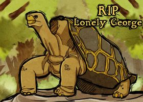 RIP Lonesome George by Luna-Akari