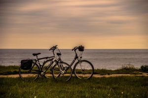 two bicycles by dominik-sekowski