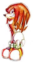 .:Knuckles the Echidna:. by Sancosity