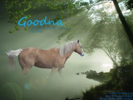 Goodna by Theliquidspoon