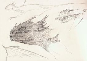 Dragon Head Sketch by kimded