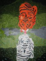 Reflection Of a Tiger by brooke1110