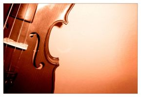 Violin . II by luiscds