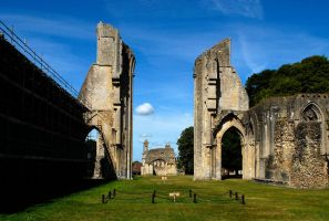 Glastonbury Abbey 3. by quaddie