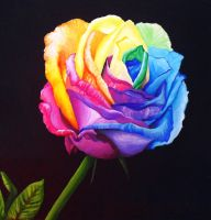 Rainbow Rose  recolored by angelskissme