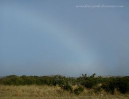 fogbow over cape hatteras national seashore by Kimi-Parks