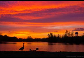 Fire On the Lake by FramedByNature