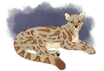 Margay character by Ratuccino