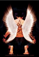 devil with angel wings by souldiers