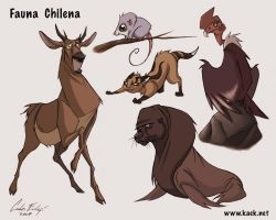 Fauna Chilensis by Kaek